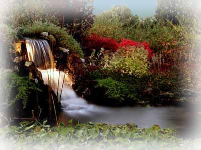 Освещение фонтанов и водоемов на участке.