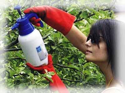 Борьба с вредителями с применением садового инвентаря.