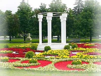 Белые стволы в садовом дизайне.