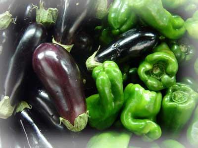 Как правильно выращивать перец и баклажан.