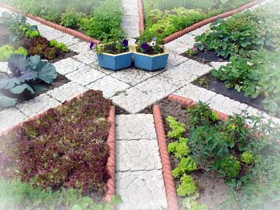 Огород - проблемы и решения