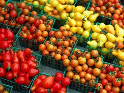 Как выбрать семена гибридов и сортов томатов для огорода