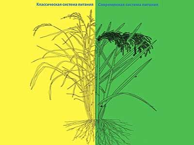 Гарантия повышения урожайности с помощью хелатов